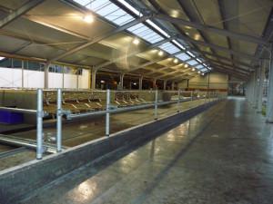 Agrarische stal